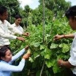 Top Agriculture Colleges in Tamilnadu