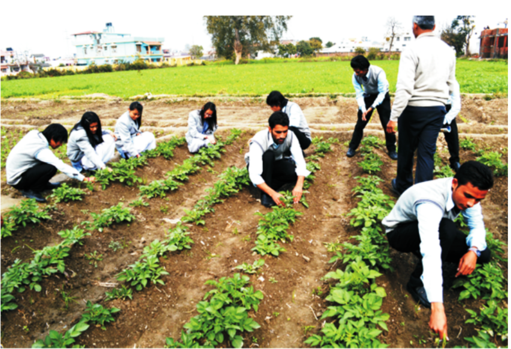 MSc Agronomy Colleges in Kerala