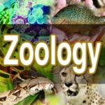 MSc Zoology Colleges in Jammu & Kashmir