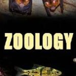 MSc Zoology Colleges in Punjab