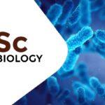 MSc Microbiology Colleges in Himachal Pradesh